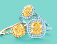 Tiffany's Online Store Gets A Fall Makeover